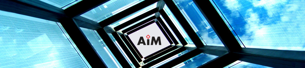 AIM-Analisis e inteligencia de Mercado